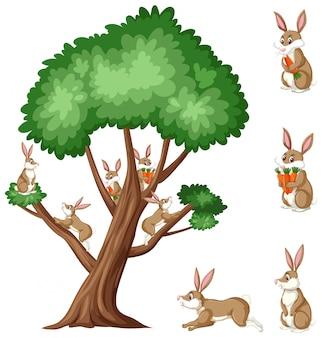 Большое дерево и коричневые кролики с морковью на белом