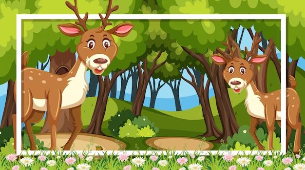森の中のかわいい鹿のフレームデザイン