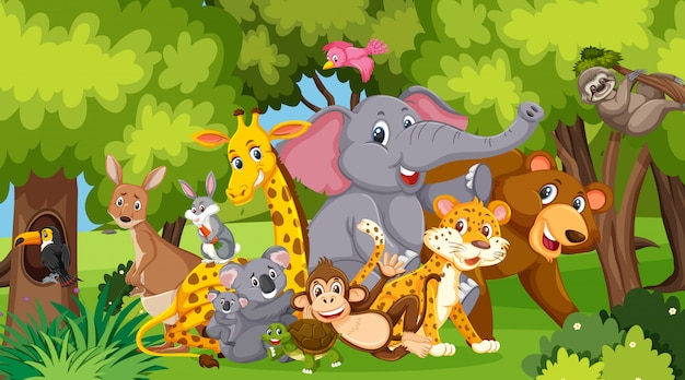 公園内の多くの野生動物とのシーン
