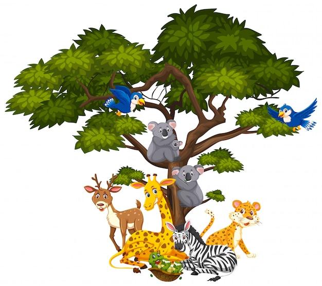 Большое дерево и много разных животных на нем
