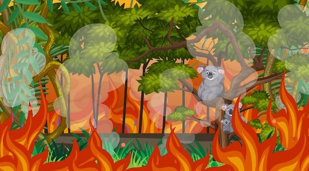 森の中の大きな山火事のシーン