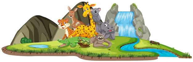 Сцена со многими дикими животными у водопада