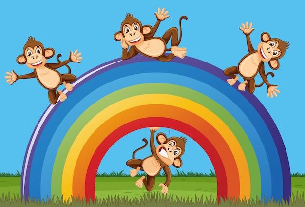 幸せな猿と公園の大きな虹のシーン