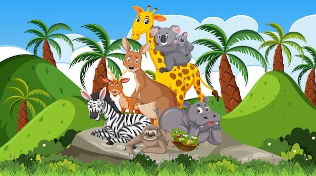 Сцена с множеством диких животных в лесу