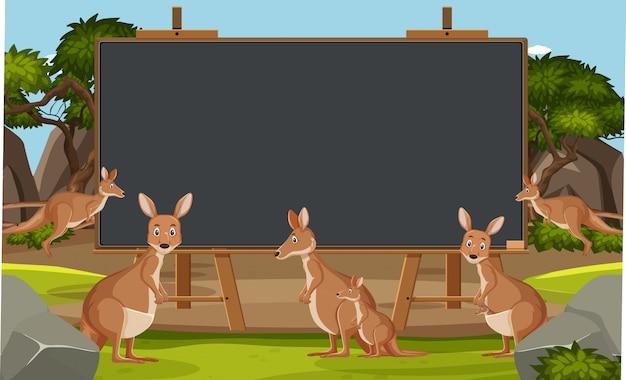 動物園のカンガルーと黒板テンプレート