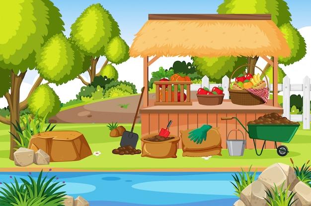 庭で野菜と果物のシーン
