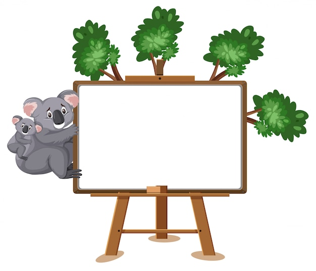 Мультфильм коала и пустой знак на белом