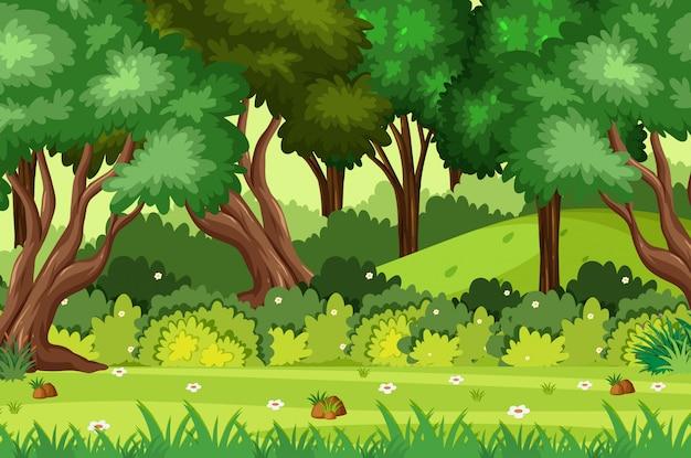 公園の緑の木々の背景シーン