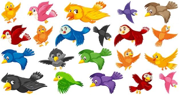 鳥の漫画のキャラクターのセット