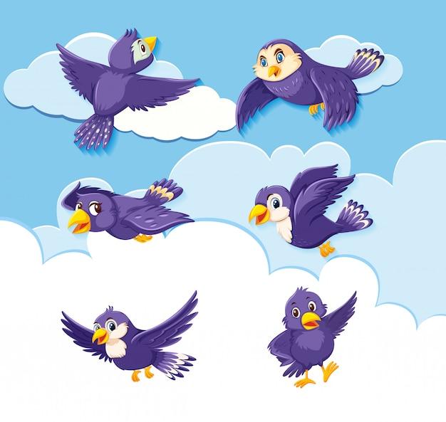 空を背景に鳥のキャラクターのセット