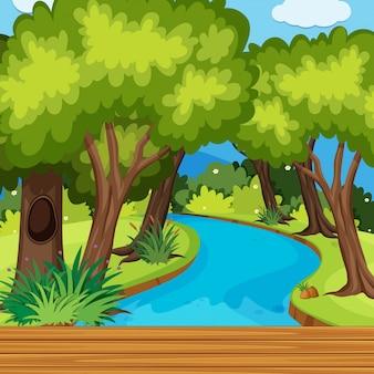 木と川がたくさんある森の風景