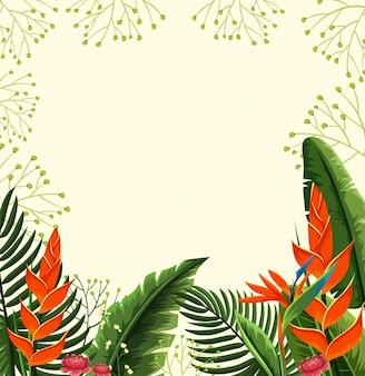 鳥のパラダイスの花の背景のデザイン