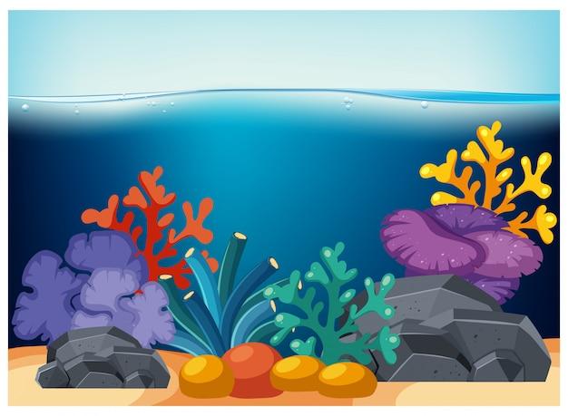 深い水の下で美しいサンゴ礁