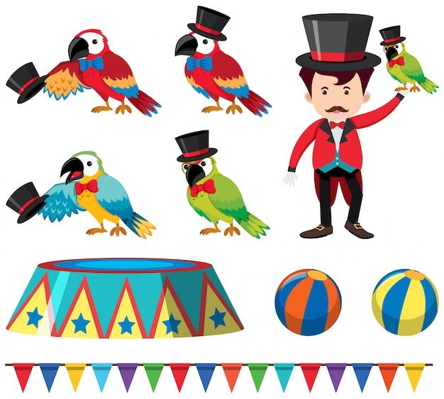 Набор шоу циркового попугая