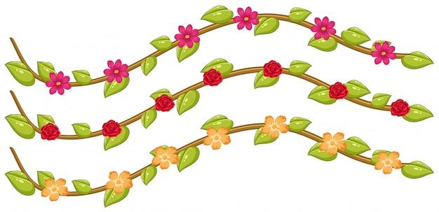 花のブドウのセット