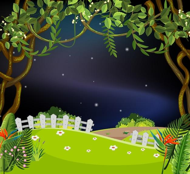 夜は美しい庭園
