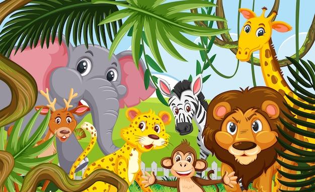 森の野生動物