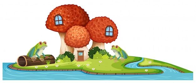 川の蛙とキノコの家