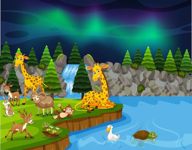 Дикие животные возле ночной сцены озера