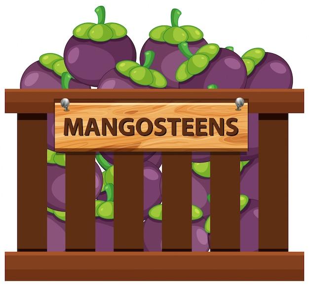マンゴスチンの木箱