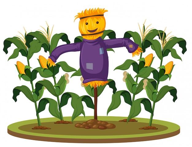 トウモロコシ農場でのかかし