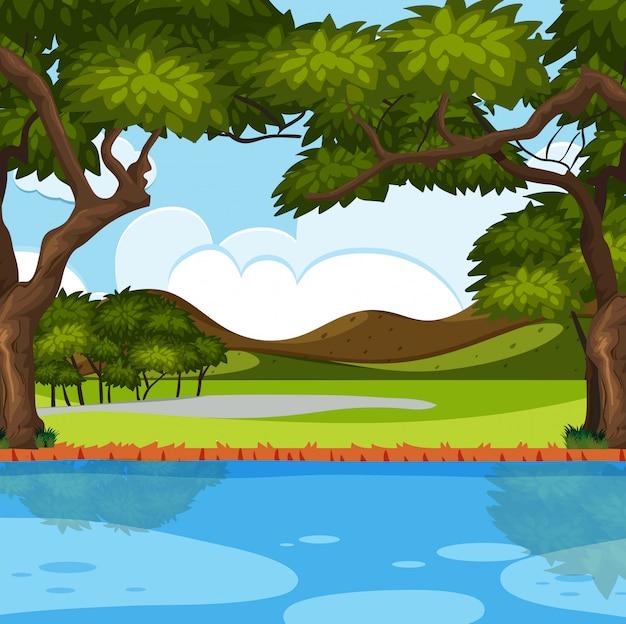 屋外自然の川のシーン