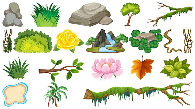 Набор природных объектов
