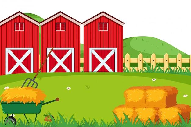 農村農地の風景