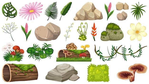 Набор элементов природы