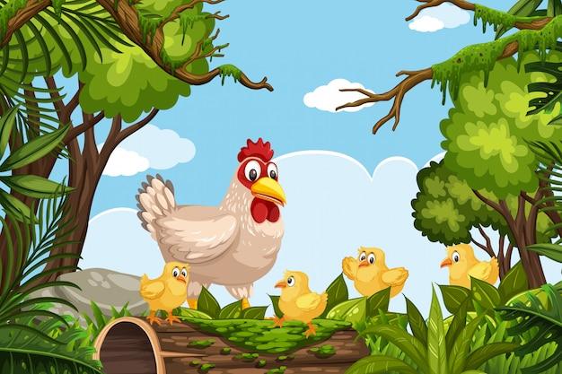 ジャングルのシーンで鶏