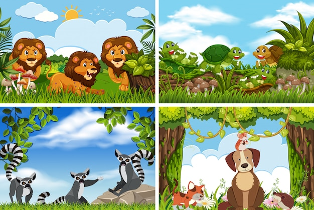 Набор различных животных в природе сцен