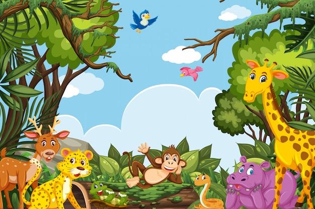 ジャングルのシーンでかわいい動物