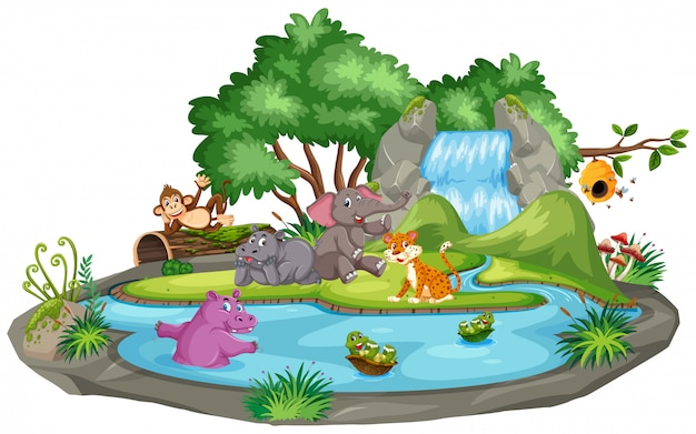 動物と池のシーン