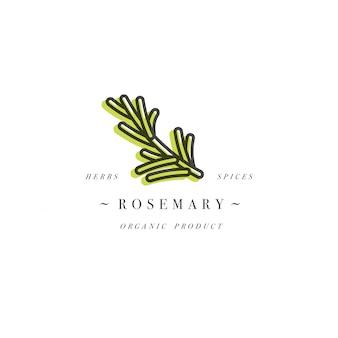 パッケージデザインテンプレートのロゴとエンブレム-ハーブとスパイス-ローズマリーの枝。トレンディな直線的なスタイルのロゴ。