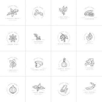 デザインテンプレートモノクロのロゴとエンブレム-ハーブとスパイスを設定します。別のスパイスのアイコン。白い背景に分離されたトレンディな直線的なスタイルのロゴ。