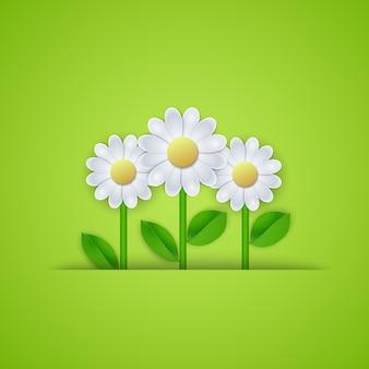 デイジーの花と夏の花の背景。