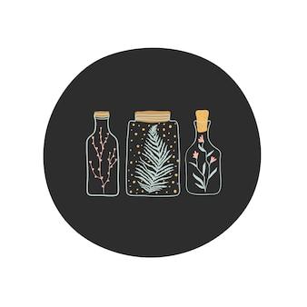 植物、花、ガラスの瓶にシダの枝。手描き漫画イラスト