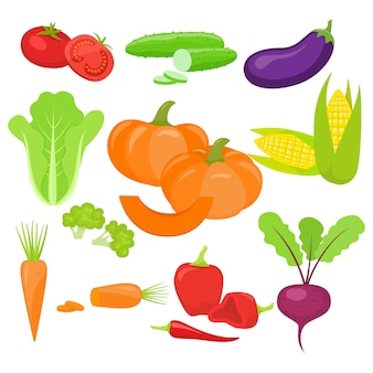 新鮮な野菜のセット