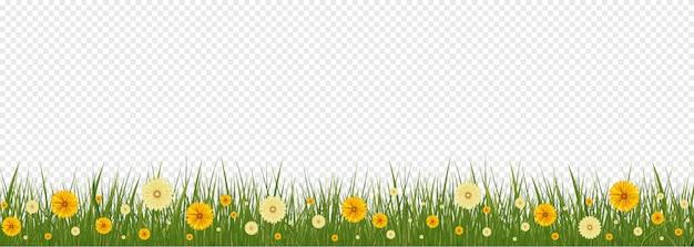 Граница травы и цветков весны, элемент украшения поздравительной открытки пасхи. иллюстрация