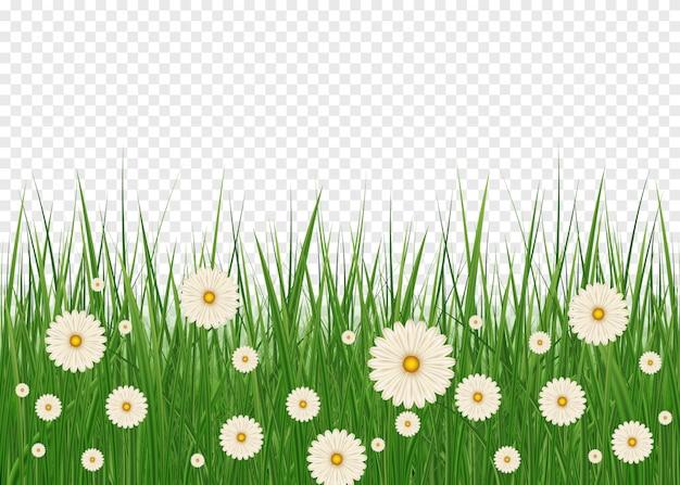 現実的なイースターの草とハッピーイースターの背景。春の草と草原の花とイースター装飾要素