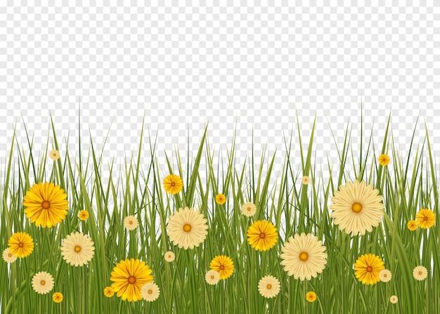緑の草の境界線と白い背景。グラデーションメッシュで設定された大きな緑の草と花