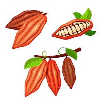 トレンディな漫画のスタイルのカカオ豆のセットです。チョコレートの木の果実。カカオの植物。あなたのデザインの食品コンセプト。