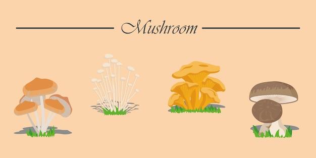 Баннер ассорти съедобные грибы и поганки в мультяшном стиле. грибы установлены. разные грибы.