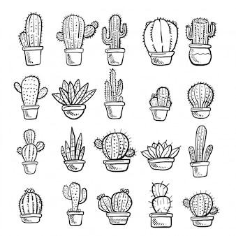 Вектор кактусов и суккулентов.