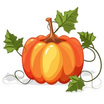 秋のオレンジパンプキン野菜