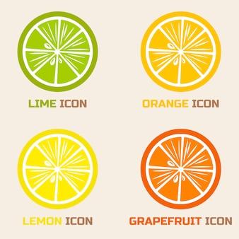 柑橘類のスライス:ライム、オレンジ、レモン、グレープフルーツ