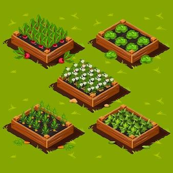 野菜の庭の箱