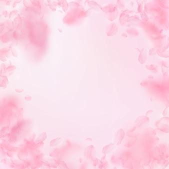 桜の花びらが落ちる。ロマンチックなピンクの花のビネット。ピンクの正方形の背景に飛んでいる花びら。