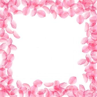 桜の花びらが落ちる。ロマンチックなピンクの絹のような大きな花。飛んでいる濃い桜の花びら。スクエアボード