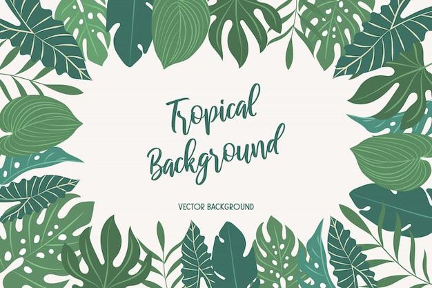 Векторный фон с тропическими листьями